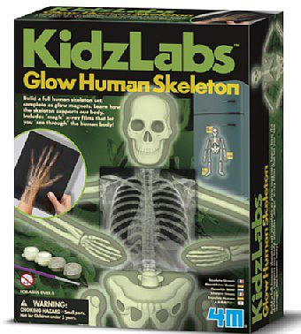 4M Project Kits Glow Human Skeleton