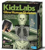 4M-Projects Glow Human Skeleton
