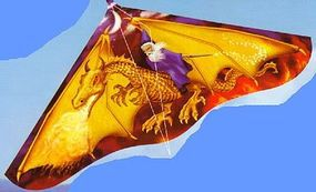 Gayla 42x22 Dragon Wizard Delta Wing Kite Single-Line Kite #110