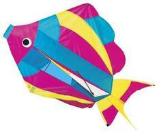 Gayla Rainbow Fish 3D 27.5 Single-Line Kite #877