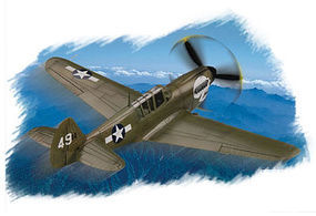 HobbyBoss P-40N Warhawk Plastic Model Aircraft Kit 1/72 Scale #80252
