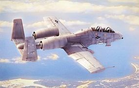 HobbyBoss N/AW A-10 Thunderbolt II Plastic Model Airplane Kit 1/48 Scale #80324