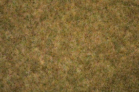 Noch Meadow Field Grass Mat (44 x 29 x .6cm) Model Railroad Grass #406