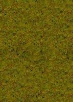 Noch Light Green Static Grass (100g) Model Railroad Grass Earth #50190