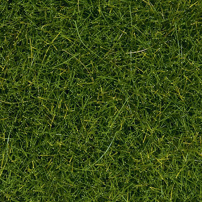 wild grass texture. Light Green Wild Grass (100g Plastic Tub) -- Model Railroad Scenery #7097 Wild Grass Texture