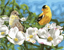 Plaid Gold & White (Finches/Dogwood) Paint by Number (20x16)