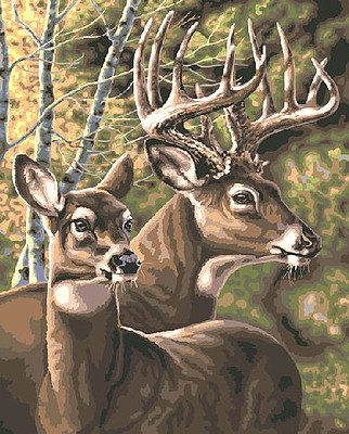 Plaid Paint By Numbers Deer Pair Paint by Number (20''x16'')