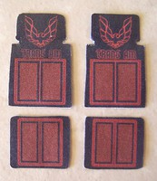 Plastic-Dreams 1/25 Trans Am Car Mat Set