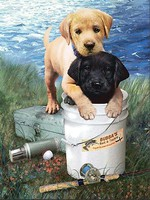 Royal-Brush Fishin Buddies (Puppies) Paint by Number Age 8+ (8.75x11.75)