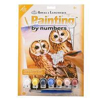 Royal-Brush PBN JR Small Tawny Owls Paint By Number Kit #pjs87