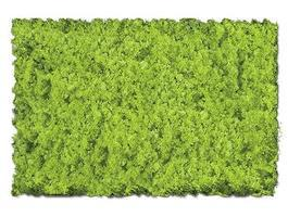 Scenic-Expr Scenic Foams & Ground Textures Light Green Model Railroad Ground Cover #802b