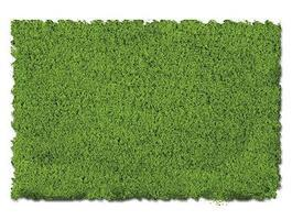Scenic-Expr Scenic Foams & Ground Textures Fine Spring Green Model Railroad Ground Cover #810b