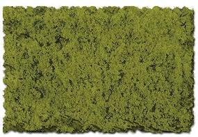 Scenic-Expr Scenic Foams & Ground Textures Coarse Moss Green Model Railroad Ground Cover #823b