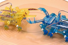 Tamiya 2-Channel Remote Control Insect Battle Set