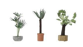 Walthers-Acc Tropical Plants Botanicals(TM) 3 Pack HO Scale Model Railroad Grass Earth #1086