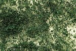 Medium Foliage - Dark Green -- Model Railroad Grass Earth -- #32608