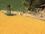 Wheat Field - Kit -- HO Scale Model Railroad Grass Earth -- #1204