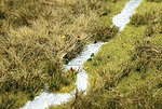 Grass Meadow w/Stream -- HO Scale Model Railroad Grass Mat -- #1313