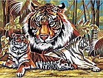 Tigers Acrylic Paint by Number 11.5''x15.5'' -- Paint By Number Kit -- #13043