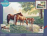 Horses by a Stream -- Paint By Number Kit -- #91159
