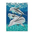 Sunlit Pals (Dolphins) -- Paint By Number Kit -- #91326