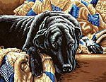 Guilty Pleasures (Black Labrador Lying on Sofa) -- Paint By Number Kit -- #91469