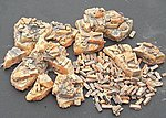 Assorted Rubble & Bricks -- Plaster Model Military Diorama -- 1/35 Scale -- #8