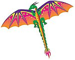 55''x45'' Dragon 3-D Nylon Kite -- Single-Line Kite -- #961