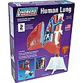 HUMAN LUNG 1-1