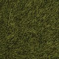 Wild Meadow, Long Fibers Static Grass (50g) -- Model Railroad Grass -- #7100