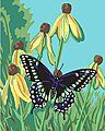 Butterfly (8''x10'') -- Beginner Paint By Number Kit -- #22051