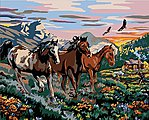 High Country Run (Horses) Paint by Number (20''x16'')