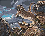 Launched (Cougar) Paint by Number (20''x16'') -- Paint By Number Kit -- #59773