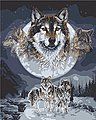 Wolf Dreamcatcher (16''x20'') -- Paint By Number Kit -- #59775