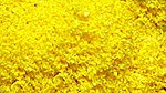 SuperLeaf Scale Model Leaf Flake 16oz Shaker Aspen Yellow -- Model Railroad Ground Cover -- #6322