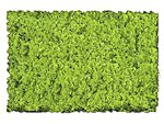 Scenic Foams & Ground Textures Light Green -- Model Railroad Ground Cover -- #802b
