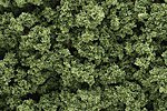 Bushes Clump Foliage -- Light Green -- Model Railroad Grass Earth -- #fc145