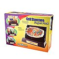 Cell Structure Kit
