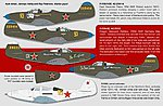 P39 Soviet Aces -- Plastic Model Aircraft Decal -- 1/32 -- #32043